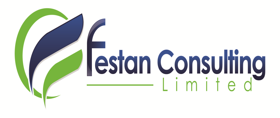 Festan Consulting